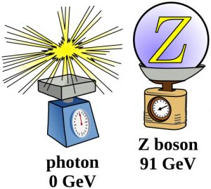 Apart from mass, the electromagnetic photon and the weak Z boson are the same particle—in two manifestations.