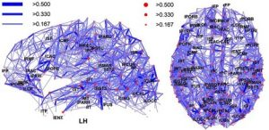 Harvard University's Jeff Lichtman gives a talk on mapping the human brain on Friday at 8 p.m. in Ramsey Auditorium.