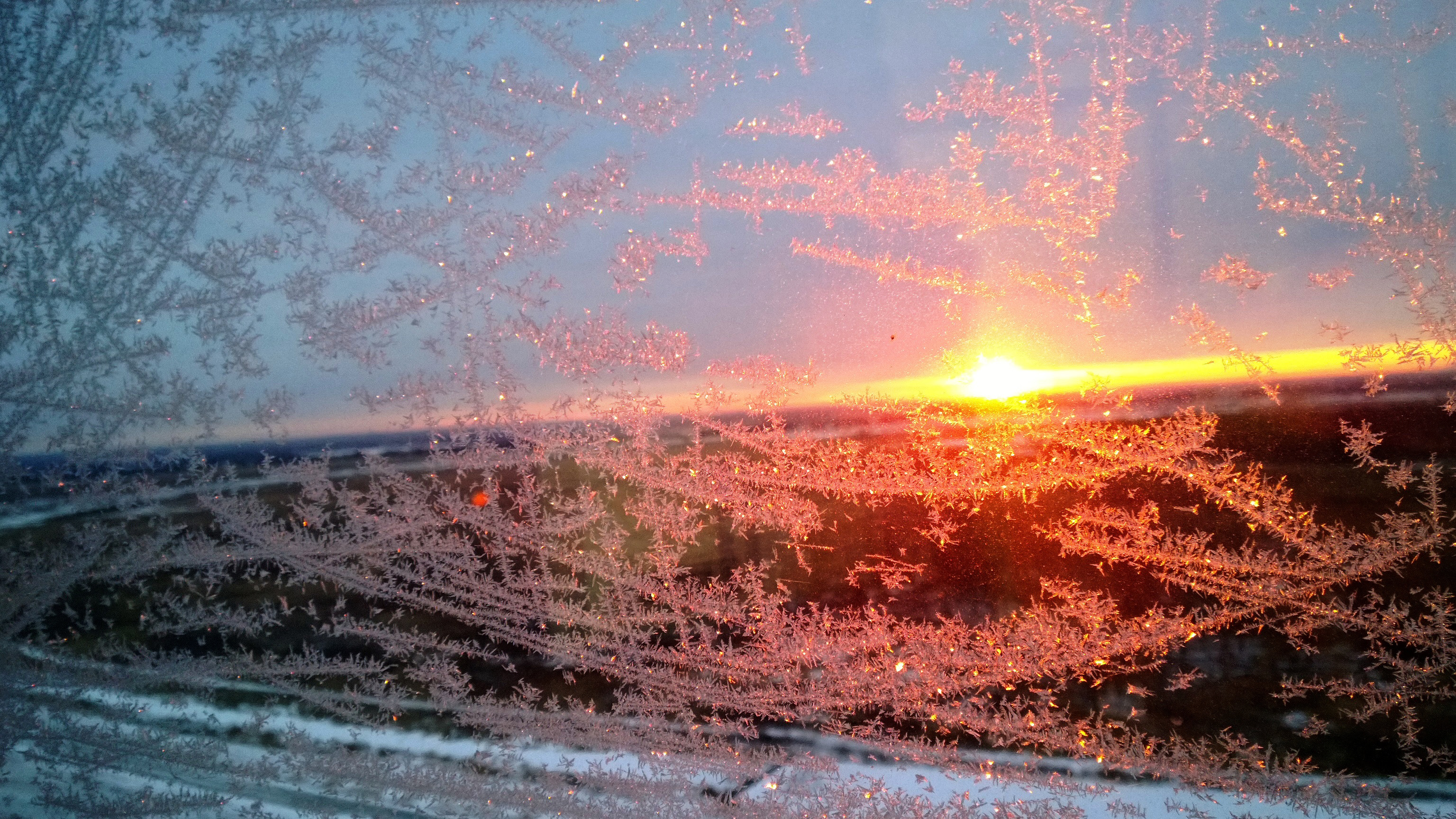 A view through a frost-covered window shows the sun at dawn on a 4-degree morning. Harry Ferguson III, PPD