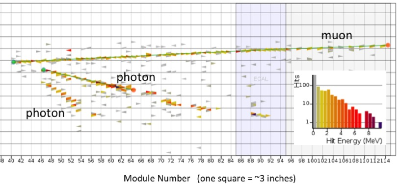 This Plot Shows What A Neutral Pion Looks Like In The Minerva Detector When Produced With