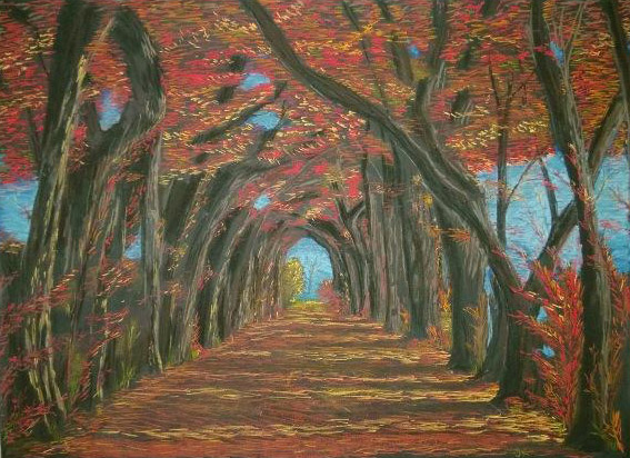 Julie Kurnat, TD, made this lovely chalk drawing of a fall canopy. Photo: Julie Kurnat, TD