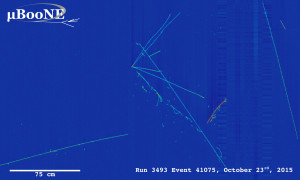 This display shows neutrino event candidates in the MicroBooNE detector. Image: MicroBooNE