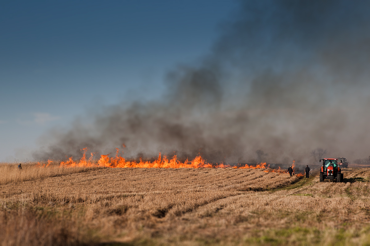 Roads and Grounds conducts a controlled burn at the Interpretive Prairie Trail last week. Photo: Marty Murphy, AD