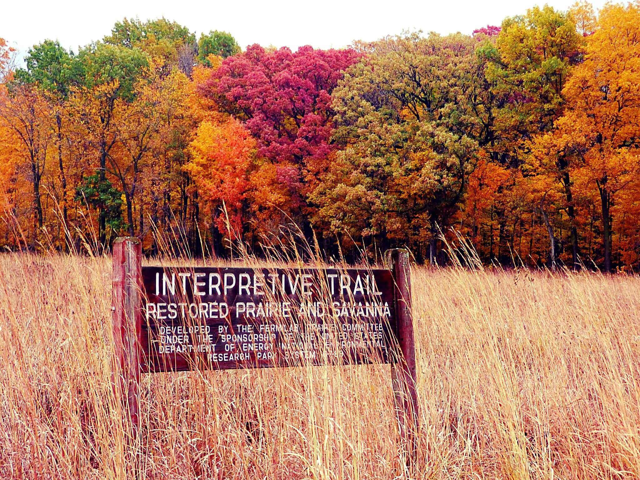 Colors take over the Interpretive Trail. Photo: Amy Scroggins, Abri Credit Union