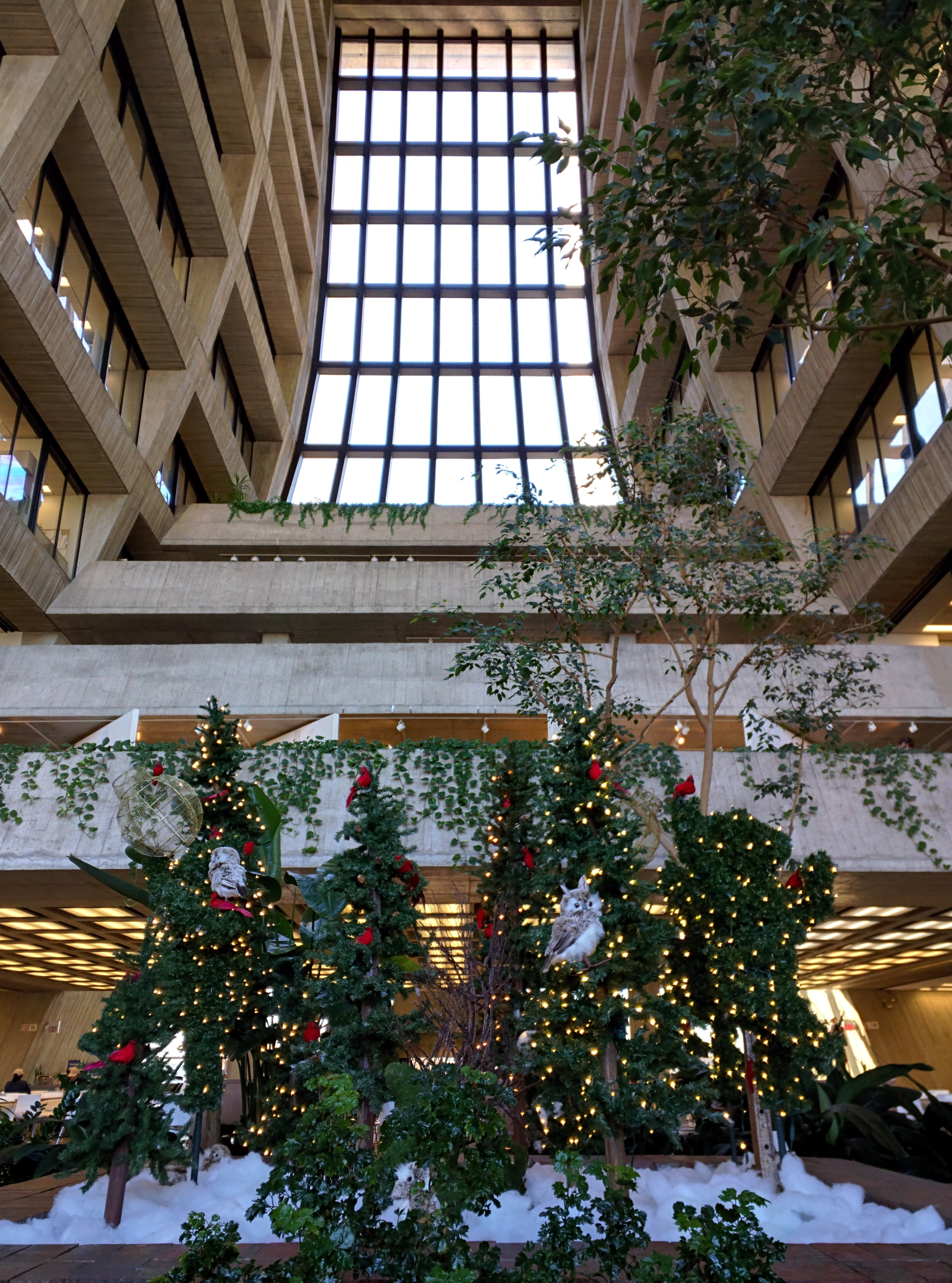 Wilson Hall is festive with seasonal lights and decorations. Photo: Valery Stanley