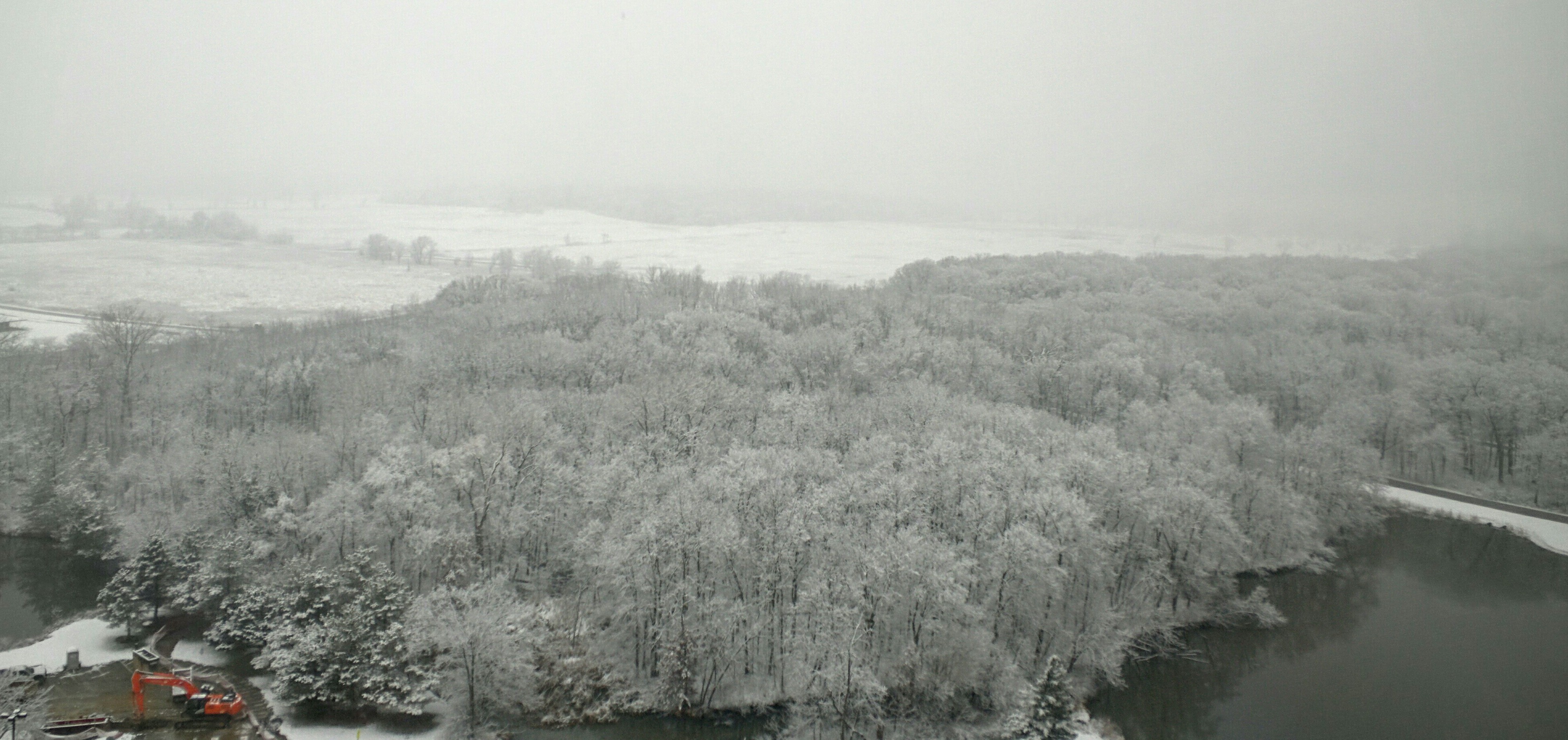 You can see the fabled frosted forest from the 15th floor. Photo: Valery Stanley, WDRS