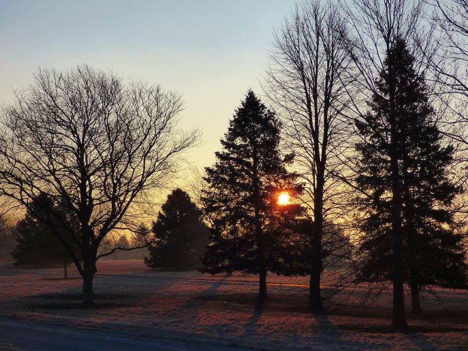 The sun peeks through the trees on a recent morning at Fermilab. Photo: Amy Scroggins, Abri Credit Union