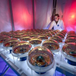 Carrie McGivern prepares photomultiplier tubes during the ANNIE detector assembly. Photo: Reidar Hahn