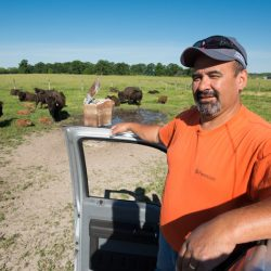 Cleo Garcia, bison herdsman, takes good care of the laboratory's herd of bison.