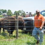 Cleo Garcia saves the baby bison