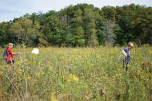 Students equipped with nets go on a search for insects in the Fermilab prairie. Photo: Leticia Shaddix, PPD