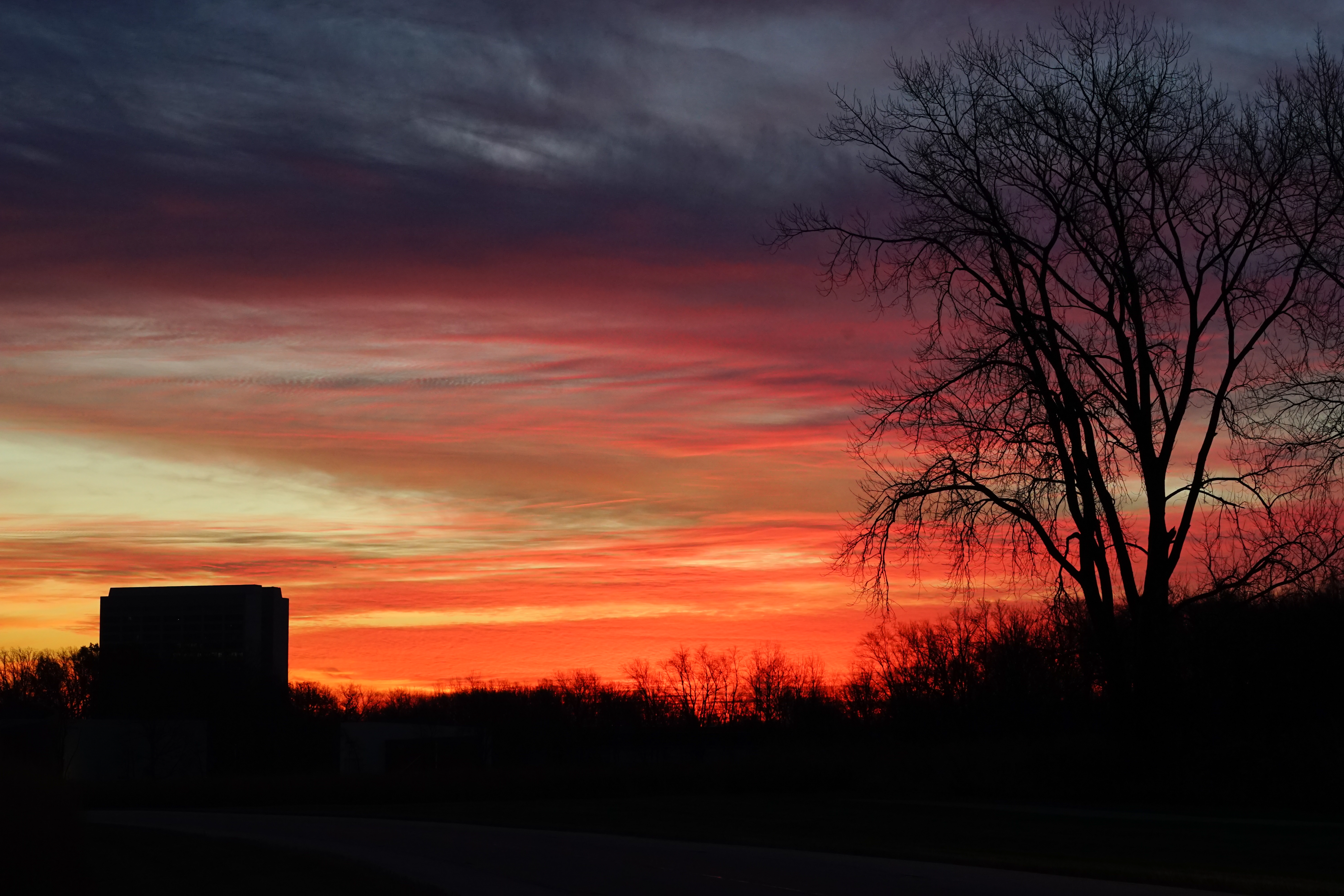 Why is the sky blue, orange and pink? Photo: Leticia Shaddix