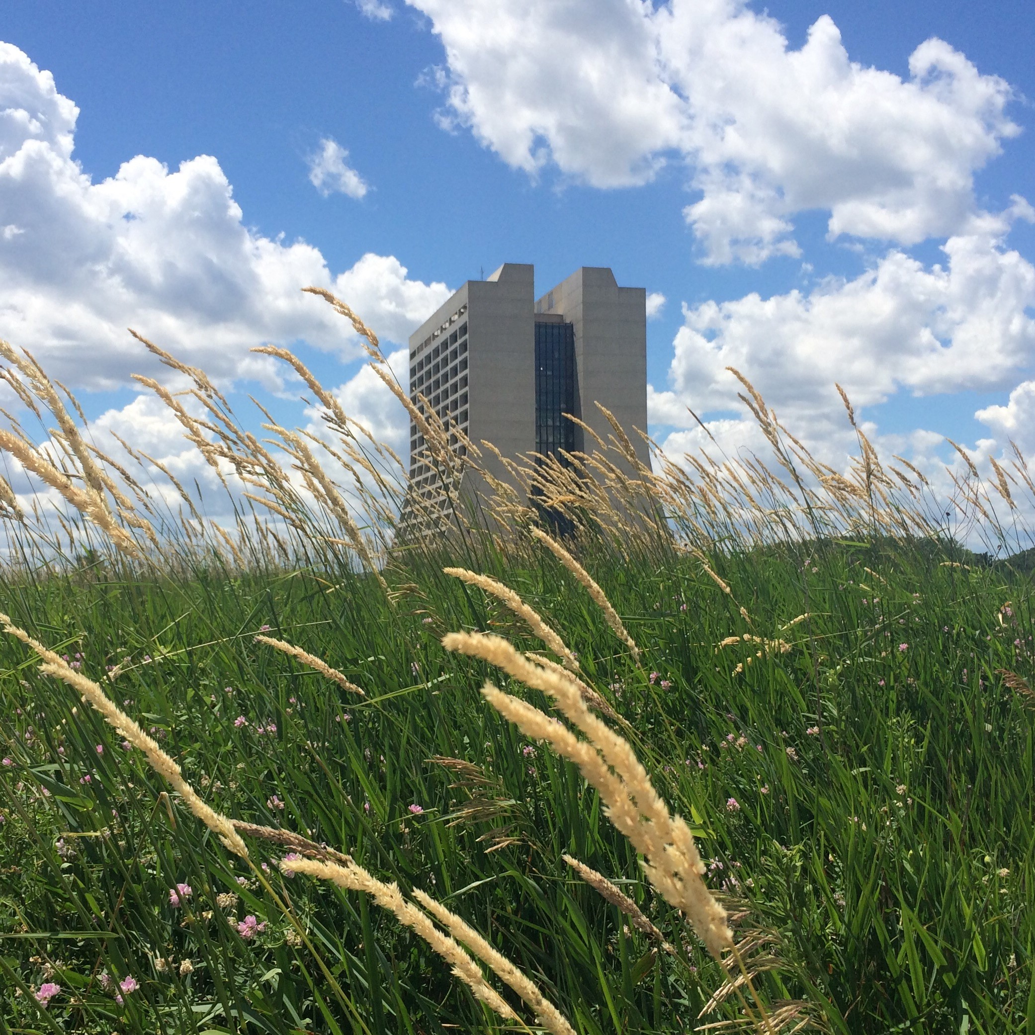 nature, sky, cloud, grass, prairie, landscape, building, Wilson Hall