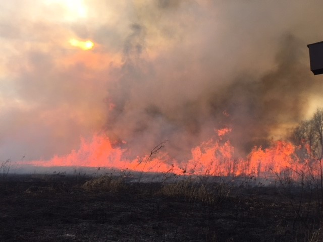 On Nov. 28 and 29, warmer dry weather allowed the Roads and Grounds Department to conduct prescribed burns in prioritized prairie and woodland areas. More are planned with current weather conditions continuing into the week of Dec. 4. Photo: Dave Shemanske, nature, landscape, sky, sun, fire, prairie