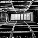 The atrium geometry is easy to appreciate in black and white. Photo: Auralee Edelen, Wilson Hall, building, interior
