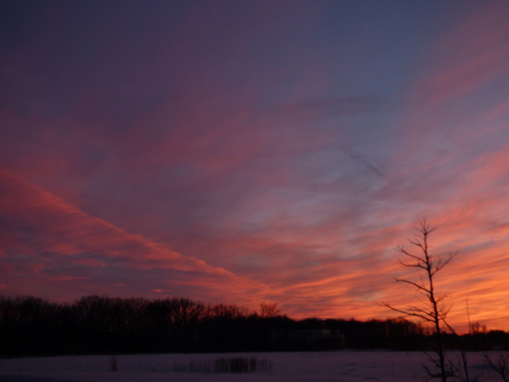 (2/5) The sunset turns the sky blue and coral over Big Woods. Photo: Amy Scroggins, sunset, sky, woods