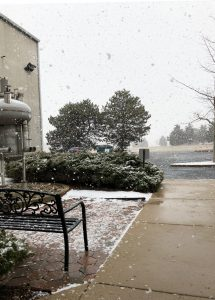 Throwback Thursday: Huge snowflakes fall on Tuesday, March 6. snow, winter Photo: Leticia Shaddix