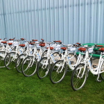 Fermilab bicycles soak up the sun in preparation for the launch of the Bike Share program. Photo: Jessica Jensen