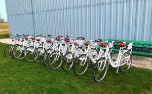 Fermilab bicycles soak up the sun in preparation for the launch of the Bike Share program. Photo: Brian Niesman