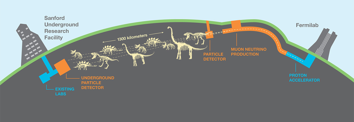 An artist's interpretation shows the range of species we might find with the DUNE beam. Image: Dino Brandosaurus