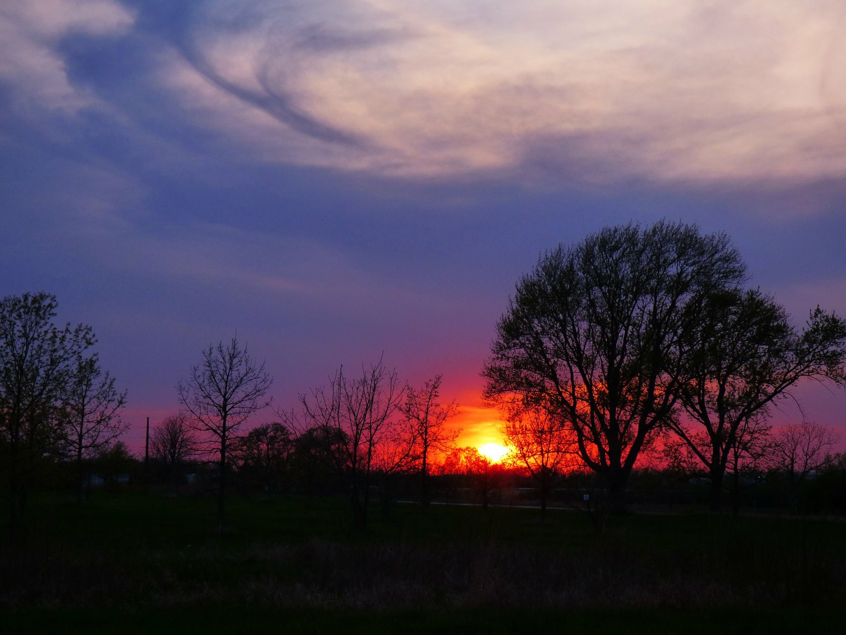 (1/3) A candle-flame-like sunset pierces the periwinkle expanse. Photo: Amy Scroggins, nature, sunset, landscape, tree, sun, sky