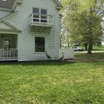 A crane checks out its reflection in the window of a house on Sauk Circle on May 17. Photo: Katee Peters, wildlife, nature, bird, crane, building, Village