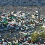 Disposable water bottles often end up where they shouldn't. We should all work to reduce our consumption of bottled water. Photo: byrev
