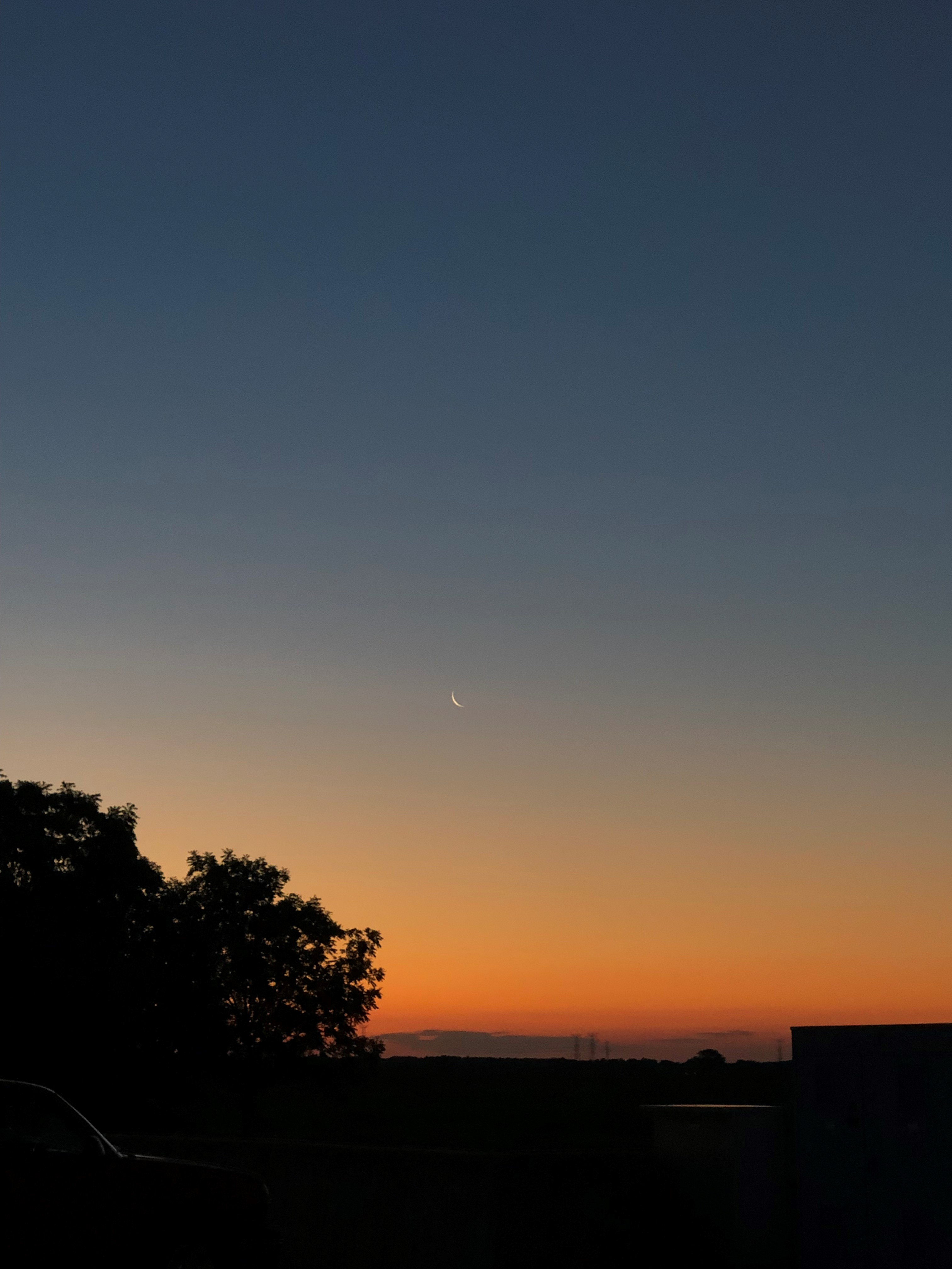 This photo was taken on the morning of July 11. Look closely for the moon. nature, landscape, sky Photo: Rick Espinoza