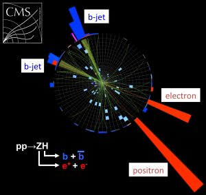 This event display from CMS shows a proton-proton collision inside the Large Hadron Collider that has characteristics of a Higgs decaying into two bottom quarks. Image courtesy of CMS