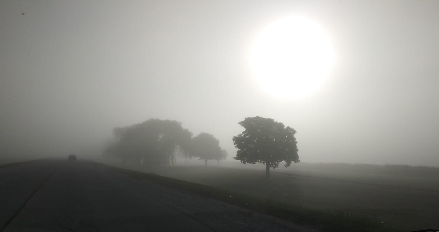 A Fermilab intern's mother captured this scene the morning of Aug. 3, driving east on Batavia Road. nature, landscape, morning, sun, plant, tree, sky Photo: Sue Kerby