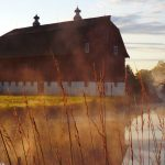 (1/2) A barn on the Main Ring pond anchors a misty scene. landscape, building, Photo: Amy Scroggins