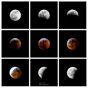 This series of images of the super blood wolf moon is captured over 2 hours 45 minutes from start to finish on the night of Jan. 20. nature, sky, moon Photo: Tom Nicol