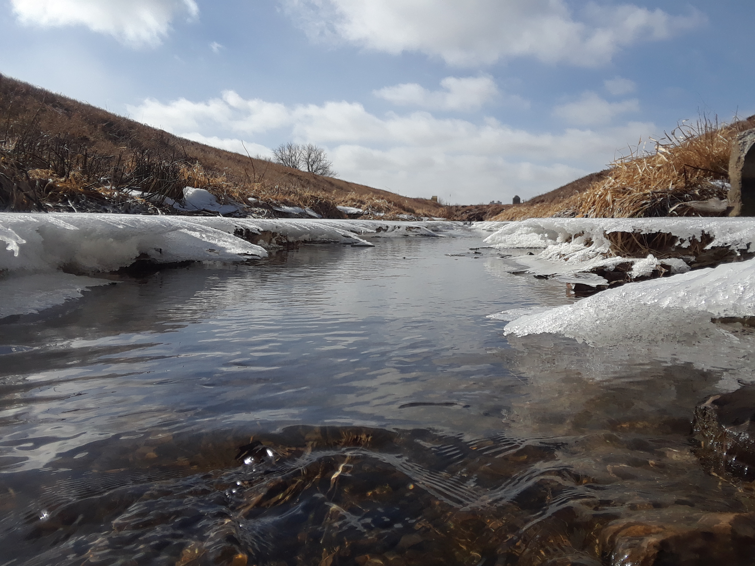 (2/2) The ice shelves curve toward the creek in the direction of the flowing water. nature, landscape, water, ice, creek, snow, winter, sky Photo: Luciano Elementi