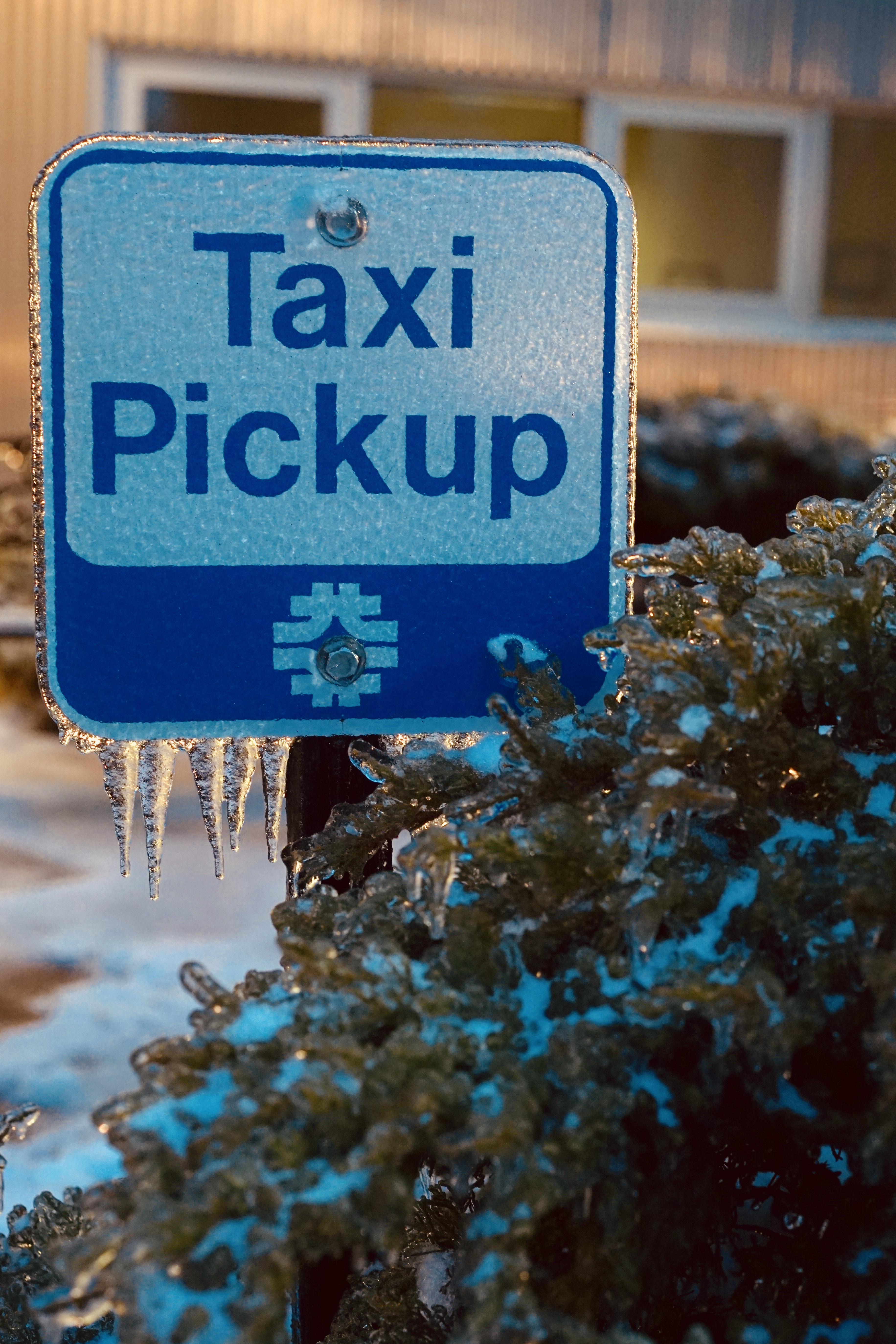 (1/4) Ice forms beneath the taxi pickup sign. winter, ice Photo: Leticia Shaddix