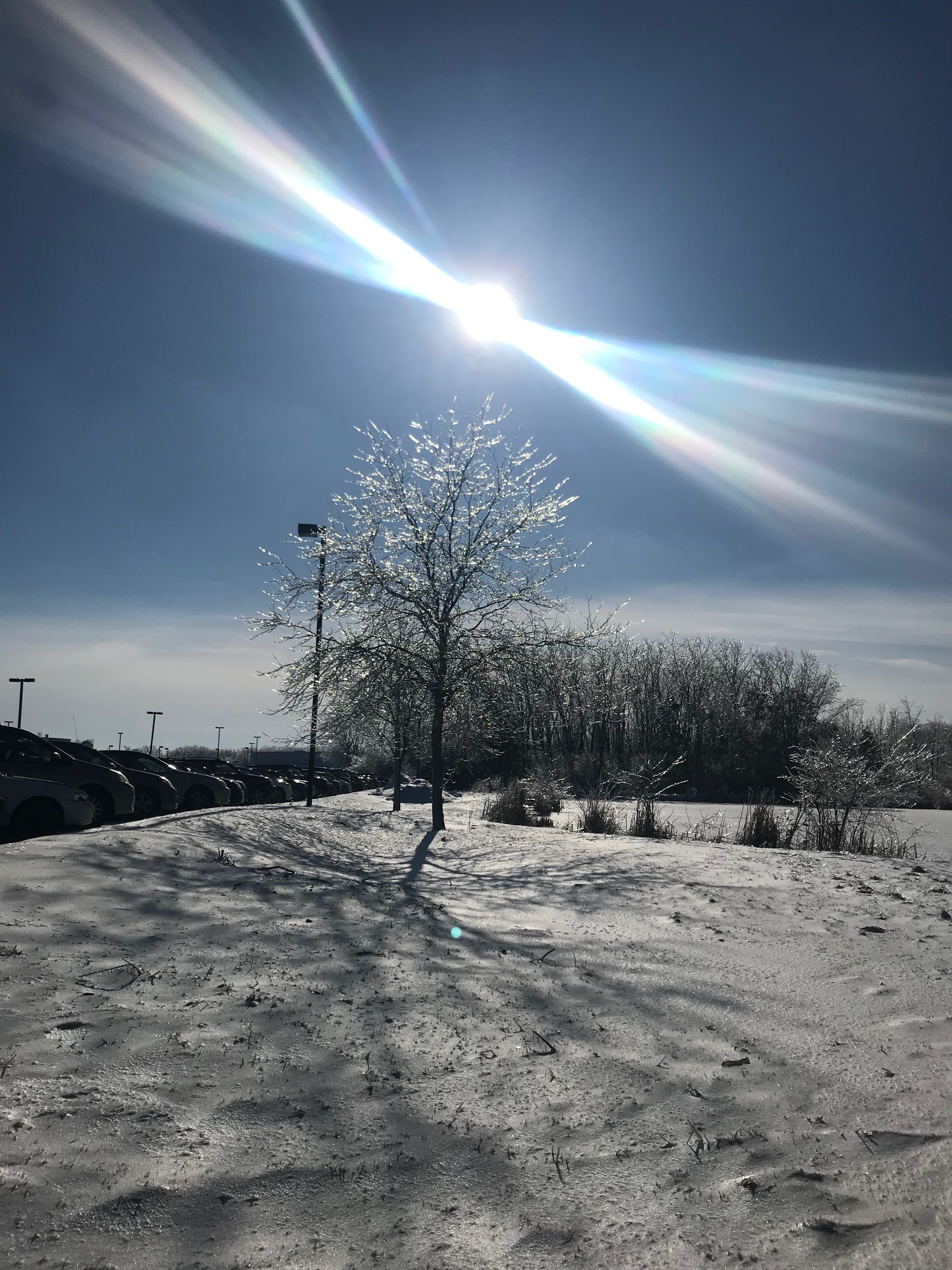 (2/3) This photo of dragonfly-shaped sunrays near Wilson Hall was taken on Feb. 13. nature, landscape, sky, sun, snow, winter Photo: Carrie McGivern