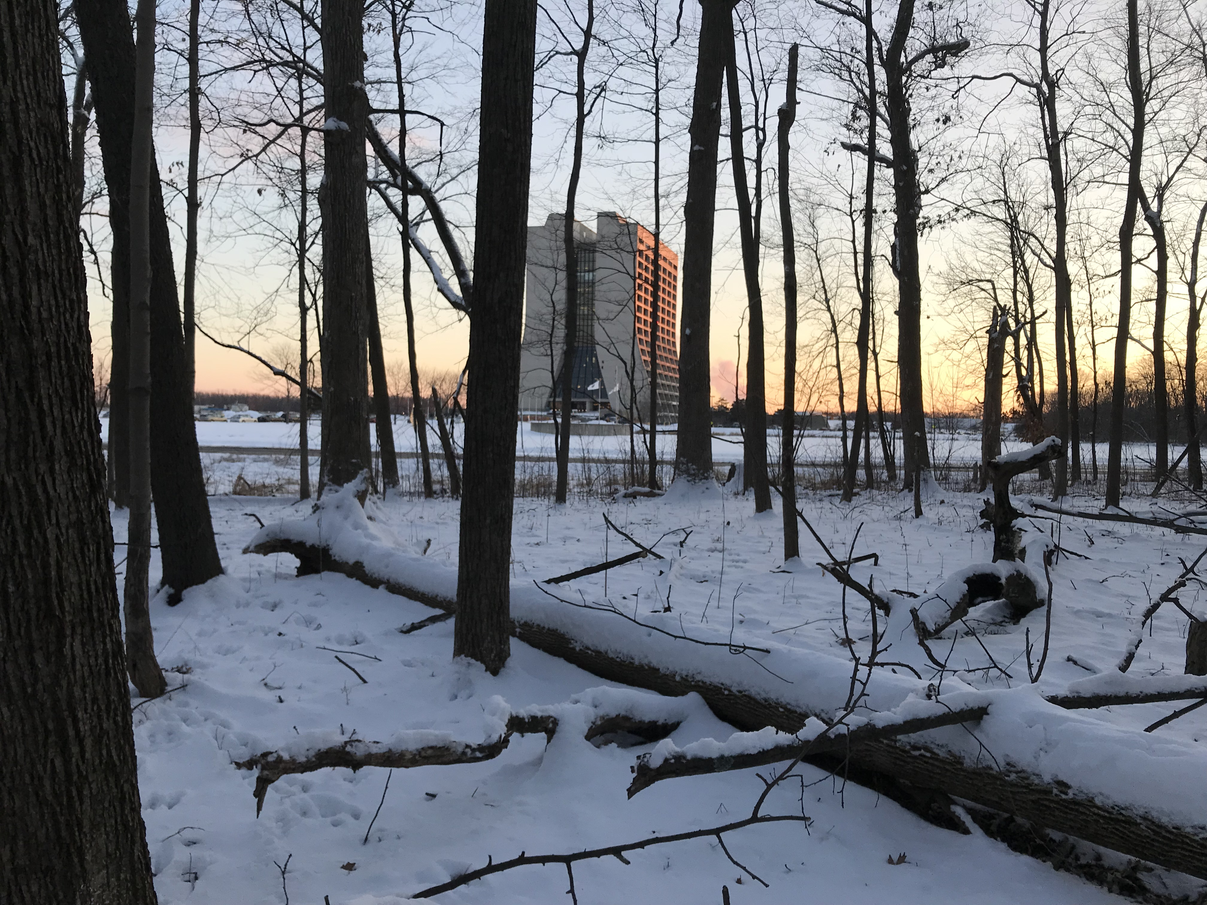 (2/2) Wilson Hall is seen in the evening light from the woods on Feb. 18. woods, tree, nature, landscape, Wilson Hall, building, winter, snow, skyPhoto: Anne Heavey