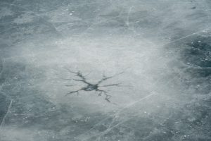 (1/2) The pattern in the ice on Swan Lake on March 6 looks like a messy Feynman diagram. nature, winter, ice Photo: Marguerite Tonjes