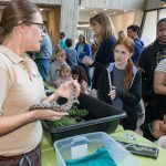 The Willowbrook Wildlife Center shows a great plains rat snake to Fermilab families. Photo: Reidar Hahn