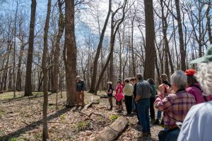 (3/4) It's a workday field trip to know our surroundings better. nature, people, woods Photo: Marguerite Tonjes