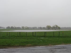 (1/2) After inches of rain in early May, the dip by Batavia Road formed what our folks cheerily named Buffalo Lake. Here, it's a gloomy day Buffalo Lake. nature, landscape, water, rain, sky Photo: Luciano Elementi