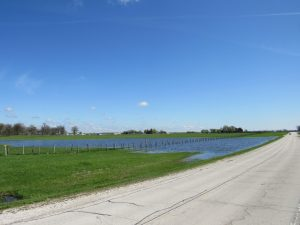 (2/2) Here, it is a sunny day Buffalo Lake. nature, landscape, water, sky, moonPhoto: Luciano Elementi