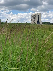 (1/3) Wilson Hall connects earth and sky. nature, landscape, plant, grass, building, Wilson Hall, sky, cloud, prairie Photo: Janet Bishop