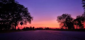 (1/2) The sun's fiery kiss to the night is seen from the Village. nature, landscape, sky, sunset, plant, tree, prairie Photo: Sudeshna Ganguly
