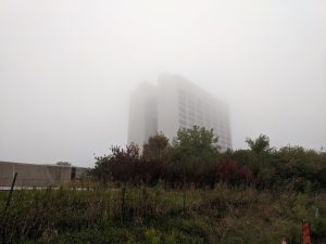 Early morning fog surrounds the high-rise. nature, landscape, building, Wilson Hall, fog Photo: Mark Dilday