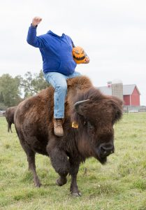 The Headless Herdsman carries treats in his pumpkin, passing them out every Halloween eve to all the good little bison. Halloween, people, bison Photo: Spider Spawn