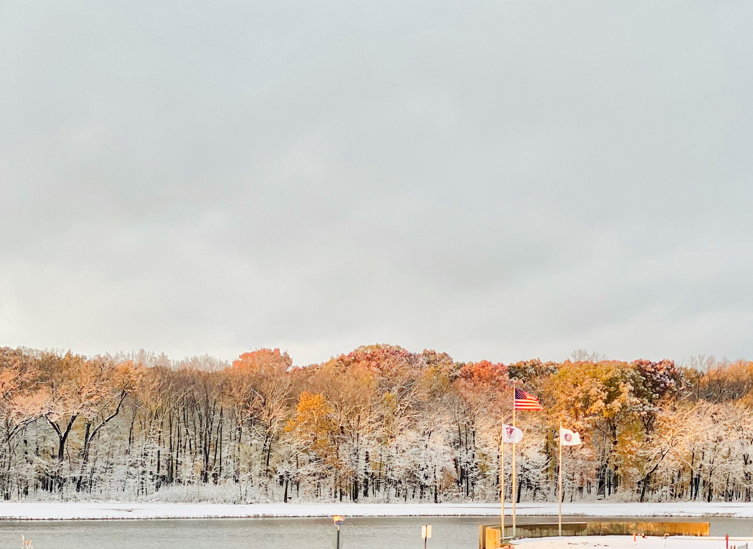 (1/2) Fermilab fall colors combine with winter snow — a rare, beautiful combination. sky, fall, autumn, winter, landscape, nature, tree, plant, woods, water, lake Photo: Sushmabhargavi Nimmalapalli