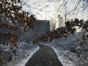(2/2) Fall meets winter in this view of Wilson Hall from the Lederman Science Center path, captured in early November. nature, landscape, fall, winter, autumn, snow, tree, plant, Wilson Hall, building Photo: Sam Zeller