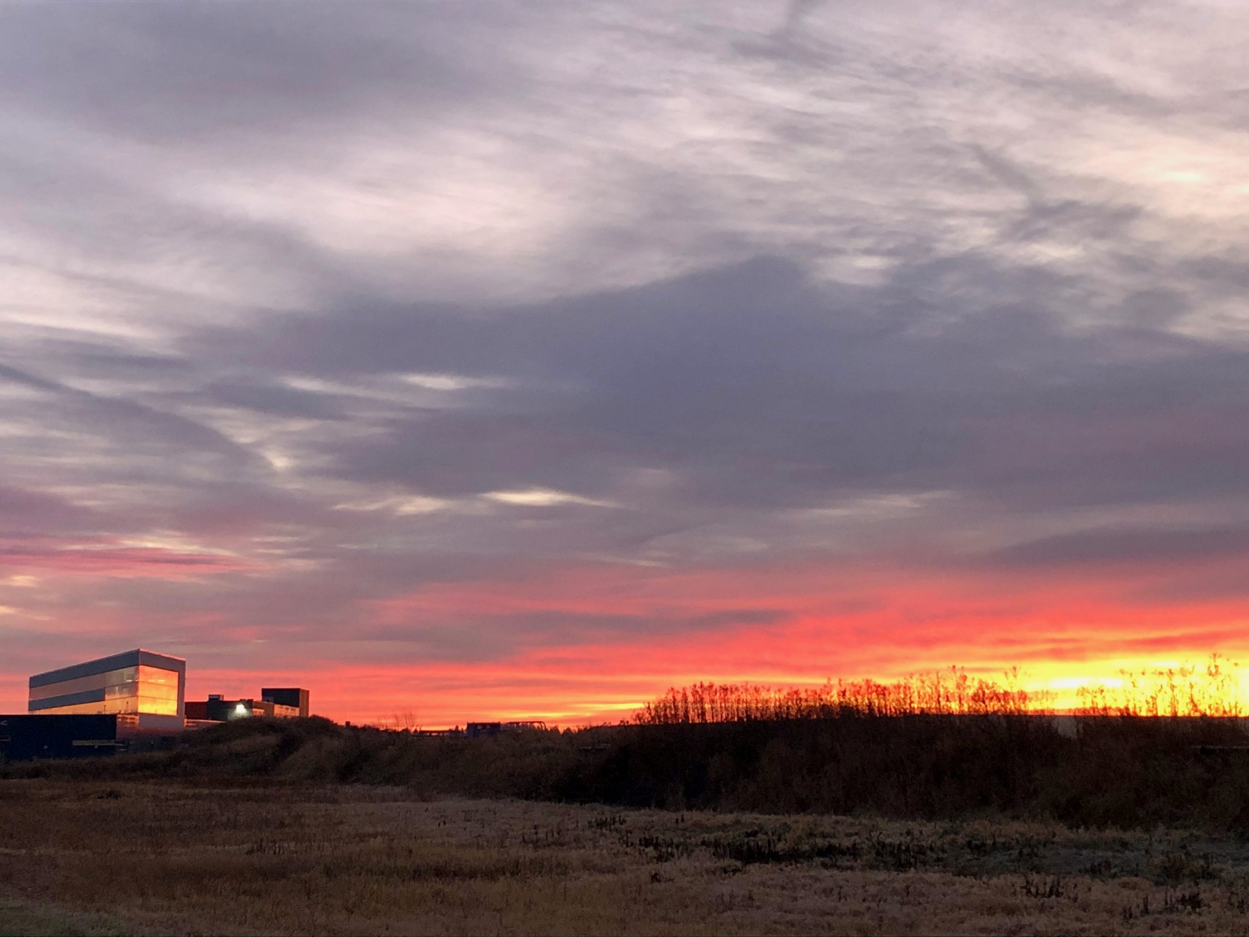 Good morning, sunshine. The light was just right to capture this Nov. 25 scene, in which the IARC OTE building seems to blend into the sky. nature, landscape, sunrise, cloud, sky Photo: Ron Kellett