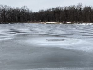 (2/4) A focal point of ice and water forms in Swan Lake, seen from the east. nature, landscape, lake, water, ice, snow, winter Photo: Michael Tartaglia