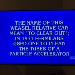 """""""What is a ferret?"""" was a Jeopardy! question on Jan. 9, during the Greatest of All Time tournament. Note that there is only one Fermilab. everyday objects Photo: Bo Hammer"""